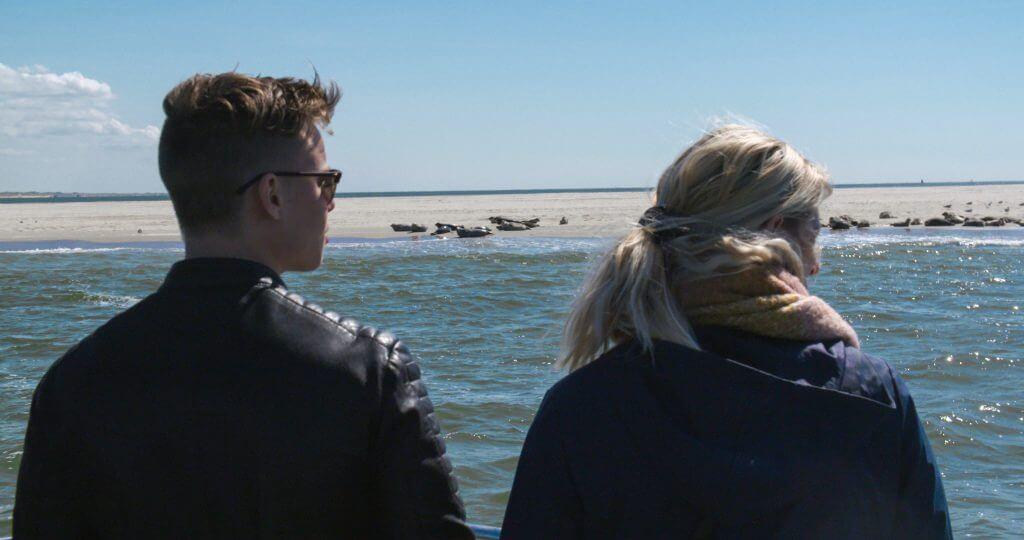 Zeehonden Texel - Zeehondentocht Texel